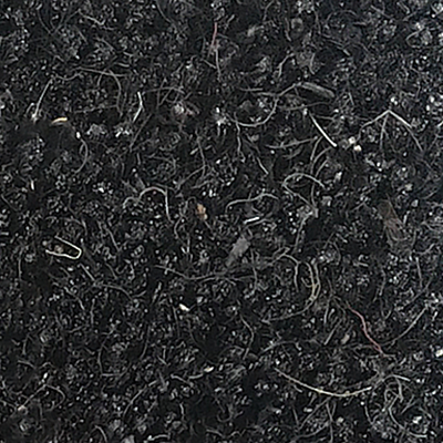 Black nc02
