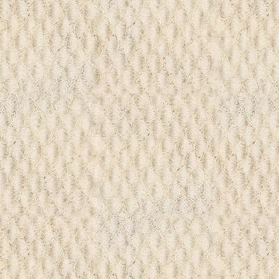 Off White 1001 (PMS Warm Grey 1 C)